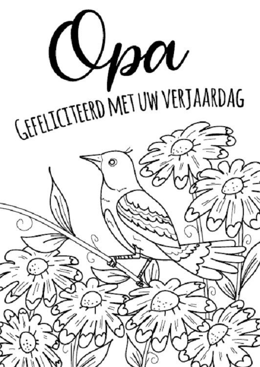 Kleurkaart Lieve opa