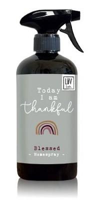 Homespray Today I am thankful