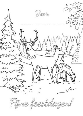 Kleurkaart Voor ... Fijne feestdagen
